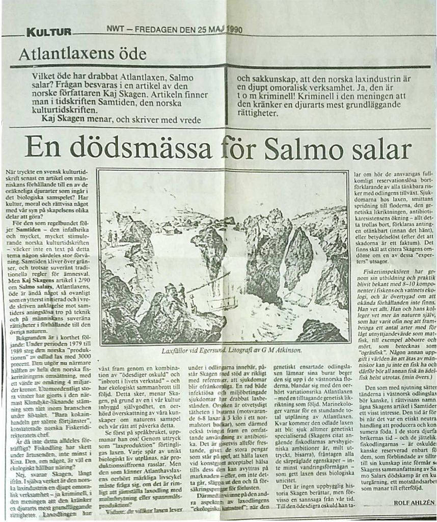 Svensk omtale av Samtiden-artikkelen Rekviem for Salmo salar. NWT 25. mai 1990.